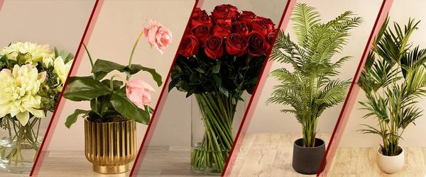 bloomr artificial flowers trees arrangement uae ksa 1