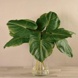 Large Canna Leaf Arrangement in Glass Vase