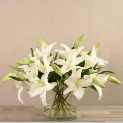 White Artificial Lily in Glass Vase