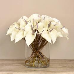 Anthurium Arrangement in Glass Vase