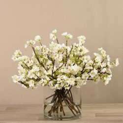 White Blossom Spray in Glass Vase