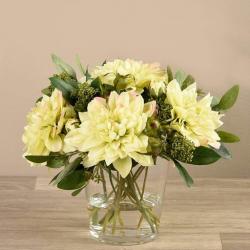 Cream Dahlia Arrangement in Glass Vase