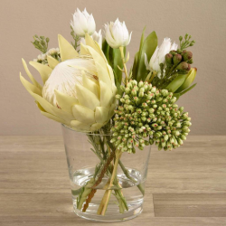 White Protea Arrangement in Glass Vase