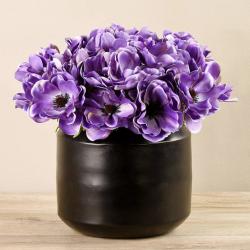 Light Purple Anemone In Black Vase
