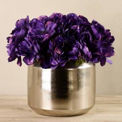 Purple Anemone In Silver Vase
