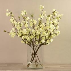 Cream Artificial Cherry Blossom in Glass Vase