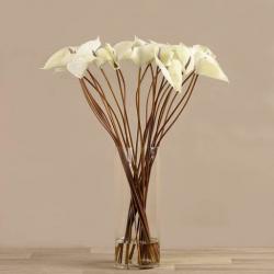 White Anthurium Arrangement in Glass Vase