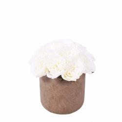 Medium Elegant Potted White Roses (Taupe Concrete Pot)