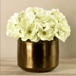 Green Anemone In Copper Vase