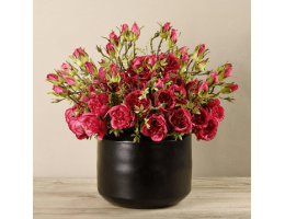 Red Rose Arrangement In Black Vase