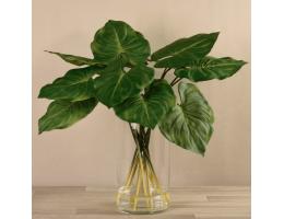 Medium Canna Leaf Arrangement in Glass Vase