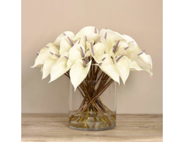 Anthurium Arrangement in Glass Vase