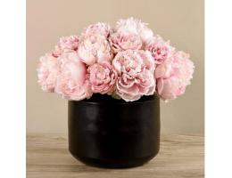 Pink Peony In Black Vase
