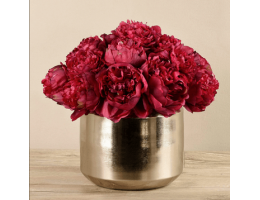 Red Peony In Silver Vase