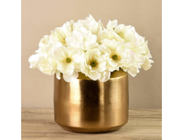 White Anemone In Gold Vase