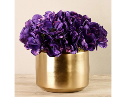 Purple Anemone In Gold Vase