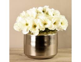 White Anemone In Silver Vase