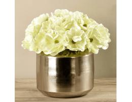 Green Anemone In Silver Vase