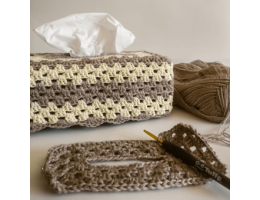 Crochet Tissue Box Cover With Gold Flecks