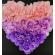 Flower Heart Canvas