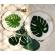 Tropical Theme Resin Art Collection